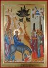 5.09. Ingresso in Gerusalemme